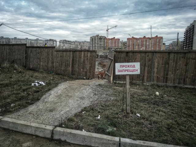 Русская тоска - бессмысленная и беспощадная