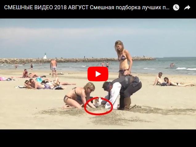 Подборка самого смешного видео август 2018