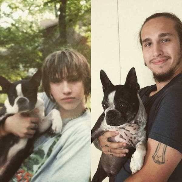 До и после - от щенка до взрослого пса