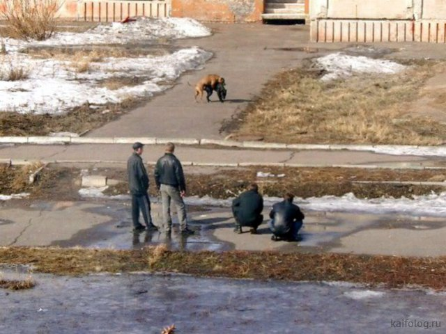 Русская провинция - бессмысленная и беспощадная