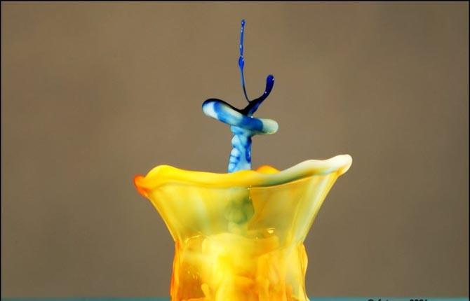 Красивые водные скульптуры - завораживающее зрелище