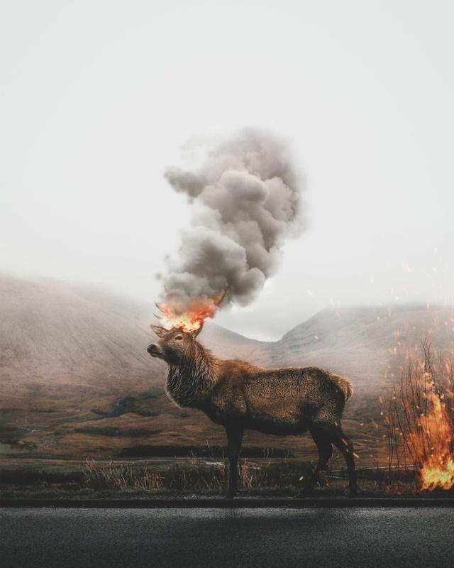 Потрясающее владение Фотошопом от турецкого дизайнера