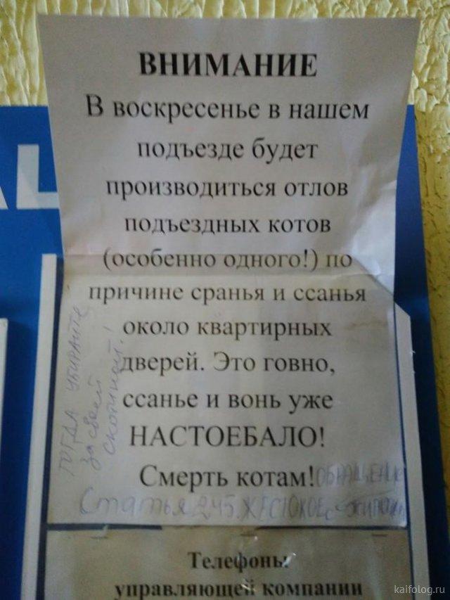 Трэш в российских подьездах
