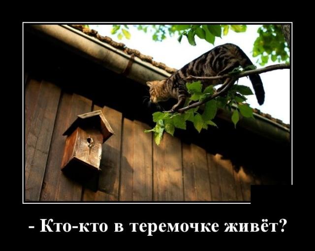 Про логику, Челябинск и Иоганна Баха - демотиваторы про жизнь