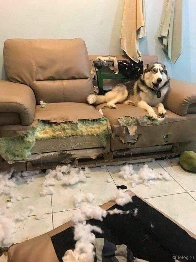 Неудачный день - когда что-то пошло не так