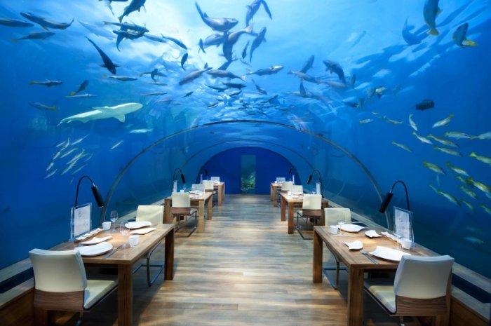 Подводный отель на Мальдивах -  это просто сказка